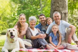 28380665 - portrait of an extended family with their pet dog sitting at the park